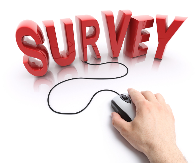 Web survey